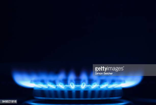 Blue gas flame on a gas stove, close up