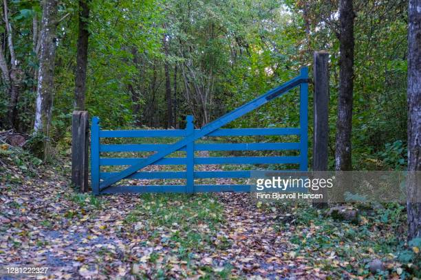 blue gate blocking a forest road - finn bjurvoll stock pictures, royalty-free photos & images