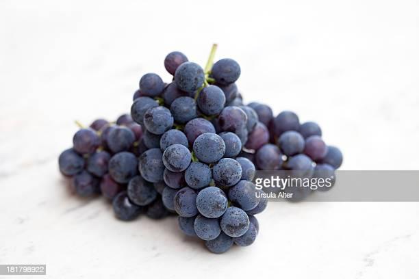 Blue grape on white marble