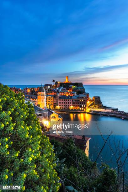 Blue hour at Vernazza. Yellow flowers in foreground. Vernazza, Cinque Terre, La Spezia, Liguria