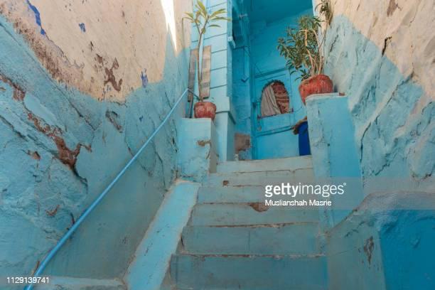 blue house stepping stone in jodhpur blue city, india. - stepwell bildbanksfoton och bilder