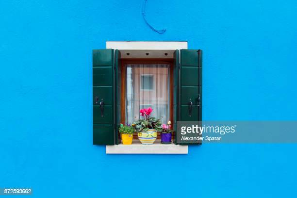 Blue house window sill with flower pots