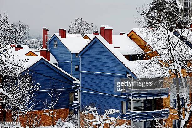 Blue houses in Winter.