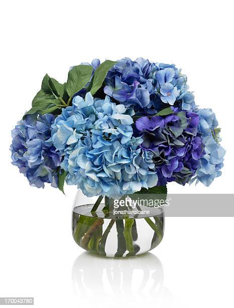 Blue hydrangea bouquet on white background