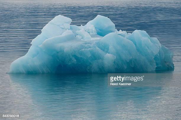 Blue Ice floats in water in Alaska