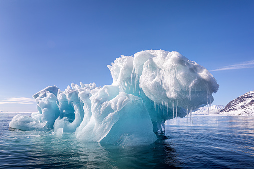 Blue ice iceberg floating in the arctic waters of Svalbard 1161404797