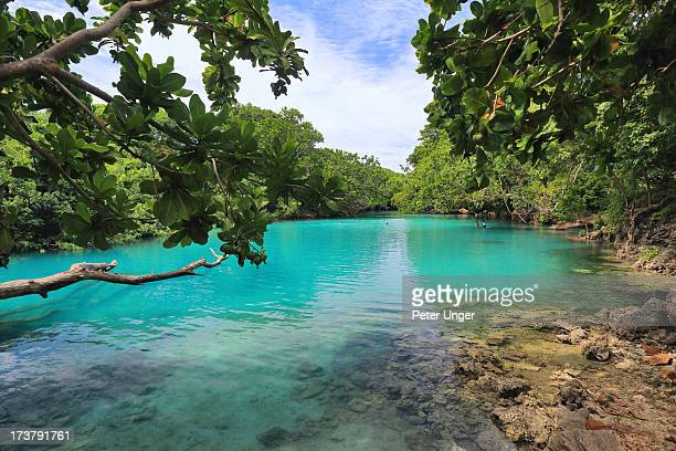 blue lagoon, efate island, vanuatu - belize stock pictures, royalty-free photos & images