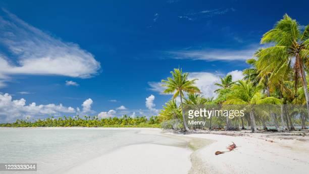blaue lagune fakarava atoll teahatea strand panorama französisch-polynesien - idylle stock-fotos und bilder