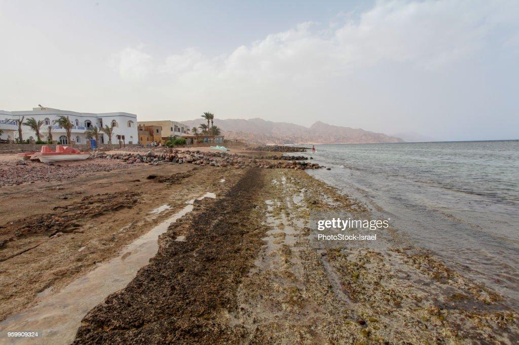 Blue Lagoon, Sinai : Stock-Foto