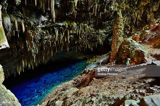 blue lake grotto, bonito, brazil - mato grosso do sul state stock pictures, royalty-free photos & images