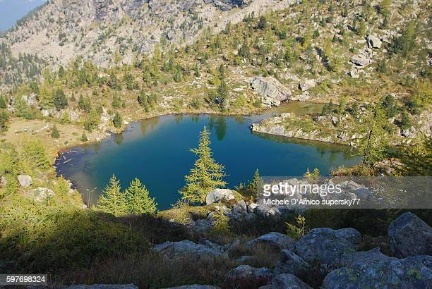 blue lake in the wild valley - european larch stock pictures, royalty-free photos & images