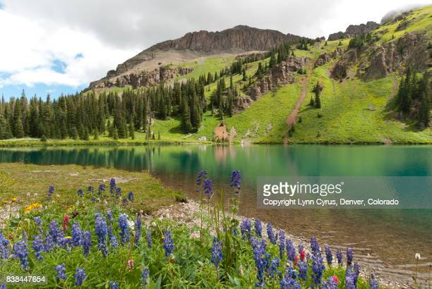 blue lake summer landscape - san juan mountains stock photos and pictures