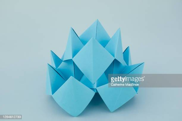blue lotus origami - catherine macbride stock pictures, royalty-free photos & images