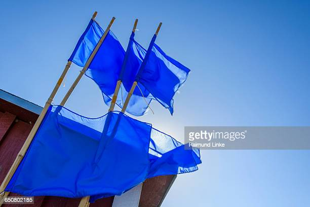 30 Top Fishing Flags Pictures, Photos, & Images - Getty Images