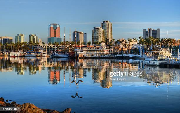 blue morning - long beach california stock photos and pictures