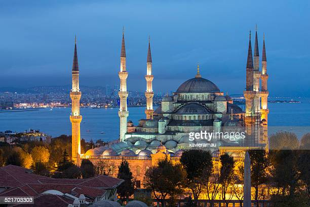 blue mosque in istanbul - blue mosque stock pictures, royalty-free photos & images