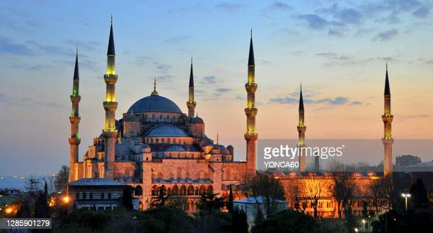 blue mosque, istanbul - istanbul stock pictures, royalty-free photos & images