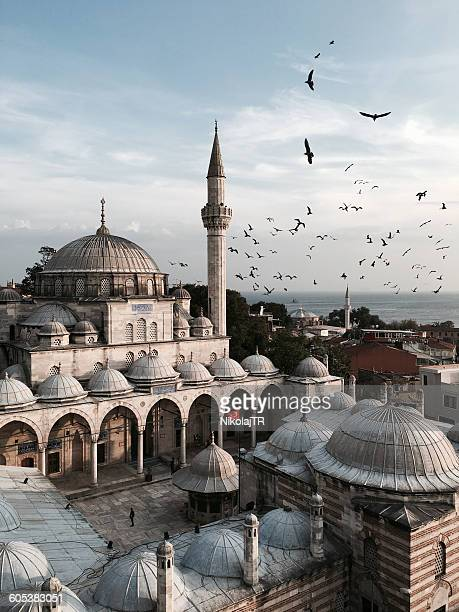 blue mosque, istanbul, turkey - blue mosque stock pictures, royalty-free photos & images