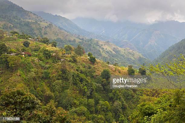 Blue Mountain landscape, Jamaica