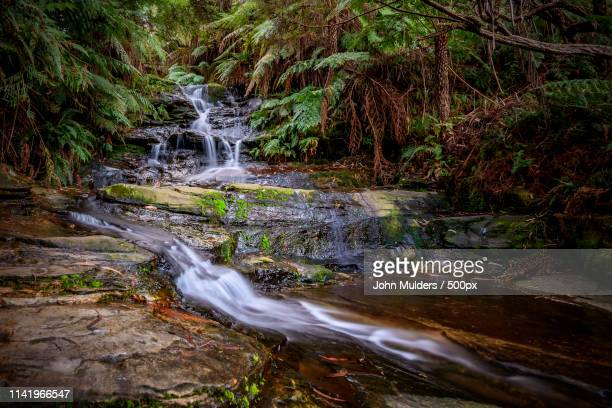 blue mountains - blue mountains national park stock pictures, royalty-free photos & images