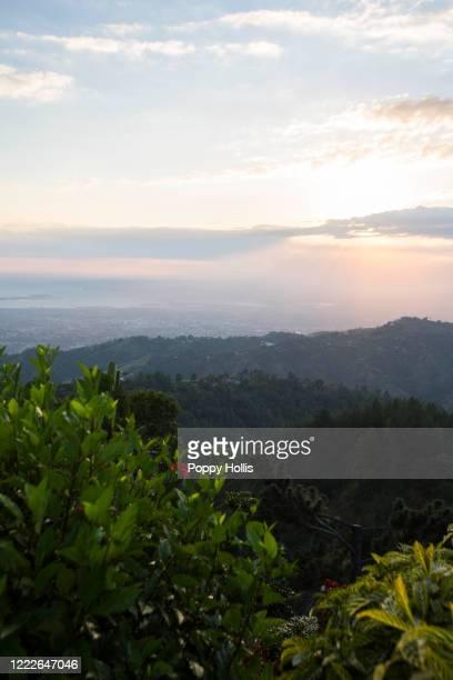 blue mountains - paisajes de jamaica fotografías e imágenes de stock