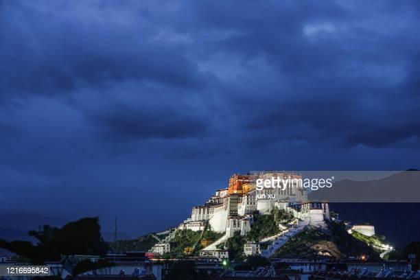 blue night view of potala palace in lhasa, tibet - lhasa apso bildbanksfoton och bilder