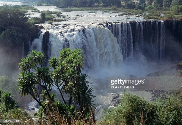 Blue Nile Falls near Bahar Dar Ethiopia