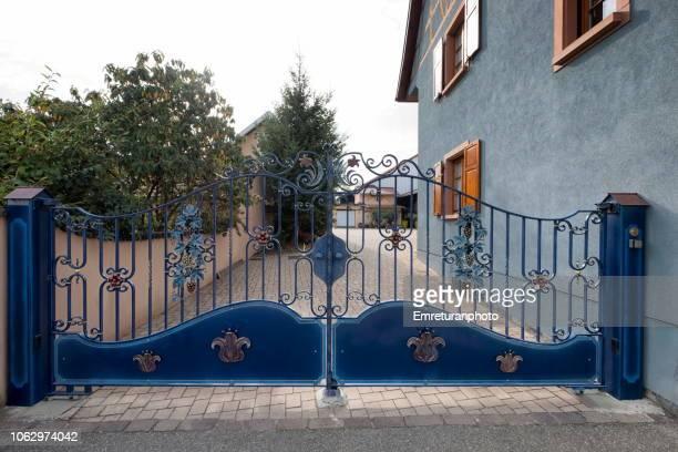 blue painted iron gate decorated with wine leaves,eguisheim. - emreturanphoto bildbanksfoton och bilder