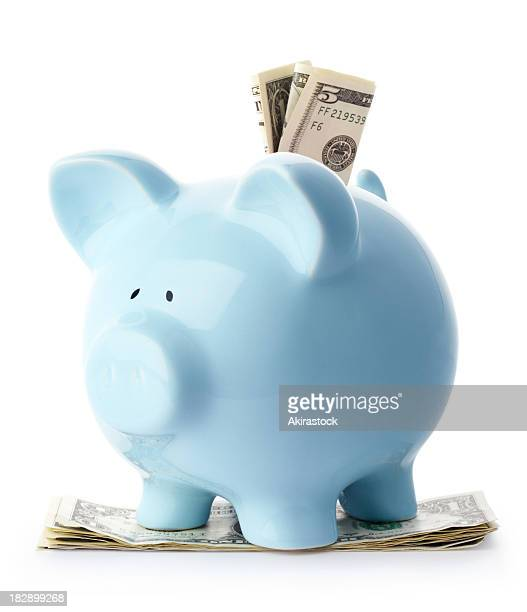 blue piggy bank with dollar bills - piggy bank stock pictures, royalty-free photos & images