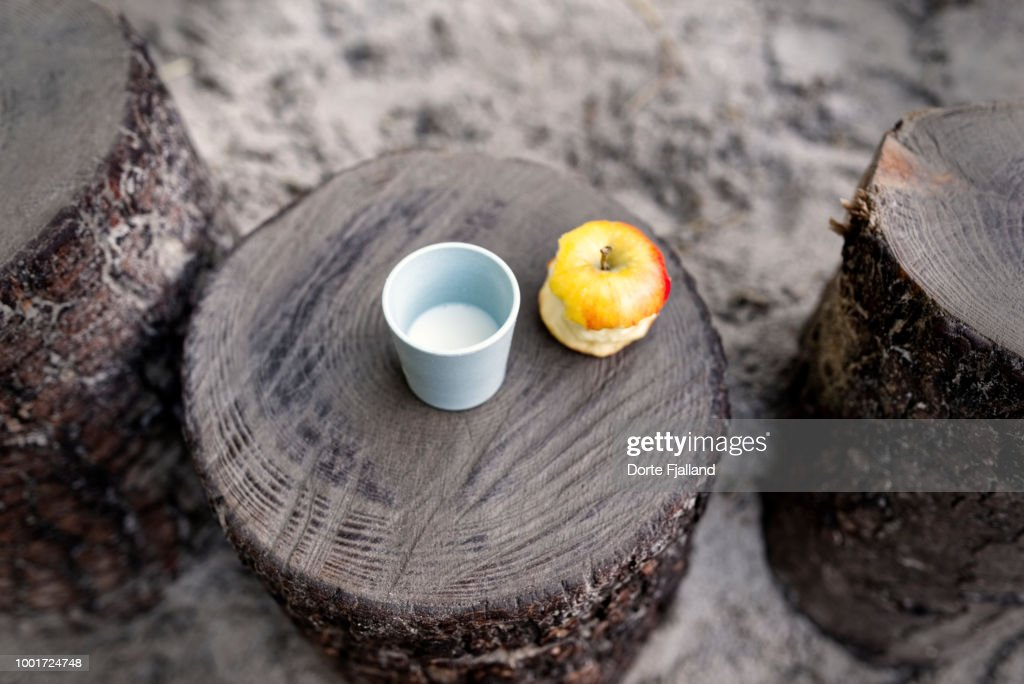 Blue plastic cup with milk and a half eaten yellow and red apple on a tree stump in a sandbox : Stock-Foto