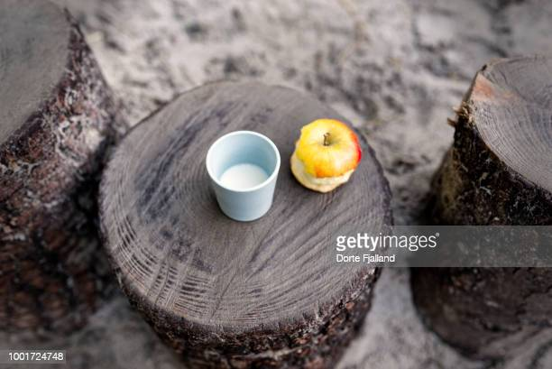 Blue plastic cup with milk and a half eaten yellow and red apple on a tree stump in a sandbox
