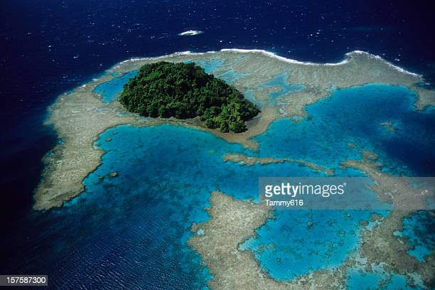 blue reef - papua new guinea stock pictures, royalty-free photos & images