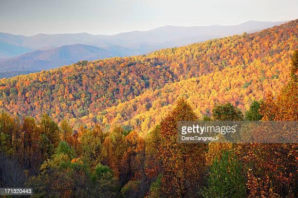 blue ridge mountains in autumn - blue ridge parkway stock pictures, royalty-free photos & images