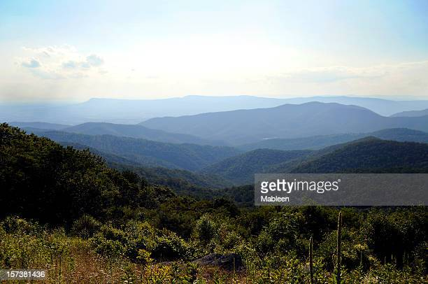 blue ridge mountains in summer - skyline drive virginia stock photos and pictures