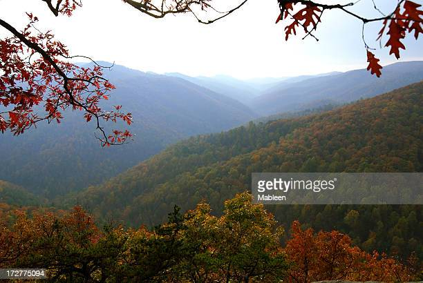 blue ridge mountains, virginia - skyline drive virginia stock photos and pictures