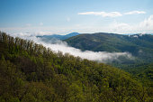 blue ridge mountains virginia wilderness view