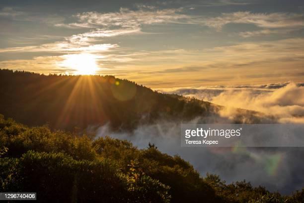 blue ridge sunrise - asheville stock pictures, royalty-free photos & images