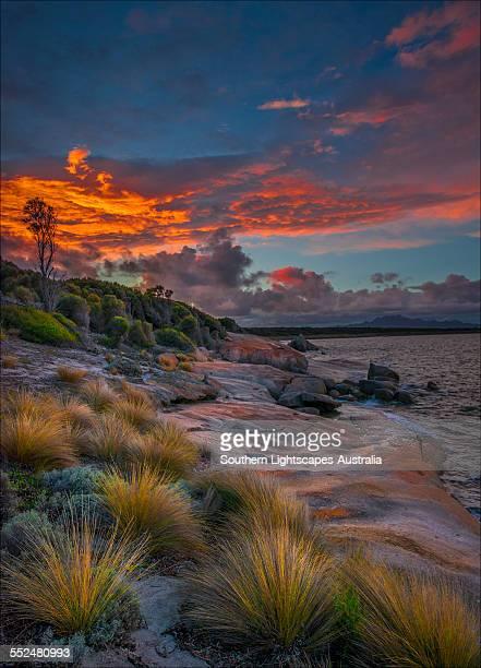 Blue Rocks Dawn