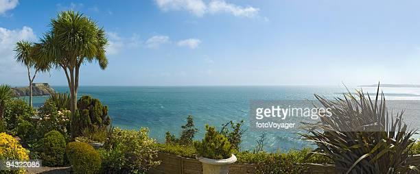 ブルーの海とヤシの木