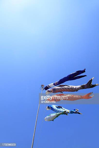 blue sky and flying carps - poisson avril photos et images de collection