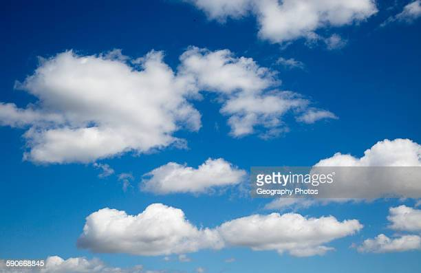 Blue sky and white fluffy cumulus clouds over Suffolk England UK
