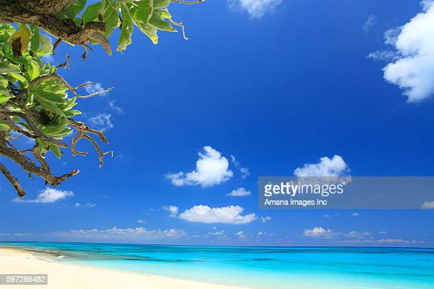 Blue Sky Over Beach