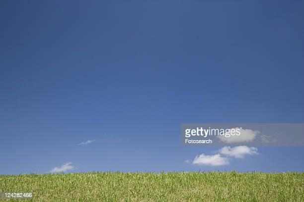 blue sky - kanto region - fotografias e filmes do acervo