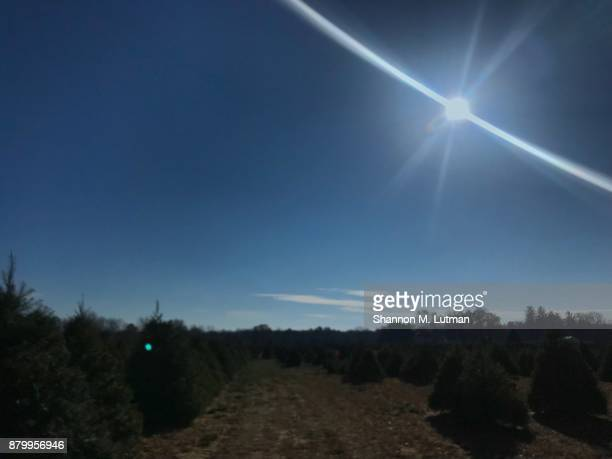 blue sky - toledo ohio stock pictures, royalty-free photos & images