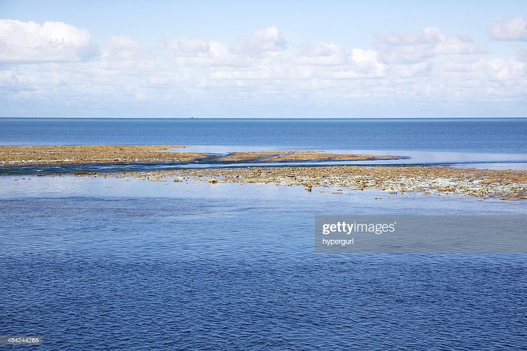 Blue sky sea clouds and coral reef at low tide. : Stock Photo