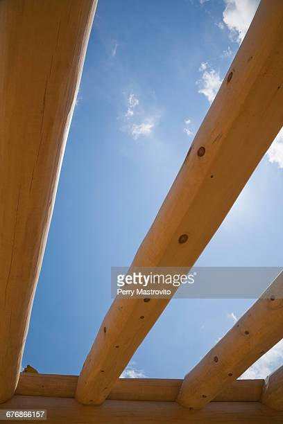 blue sky through eastern white pine construction frame - eastern white pine stock pictures, royalty-free photos & images
