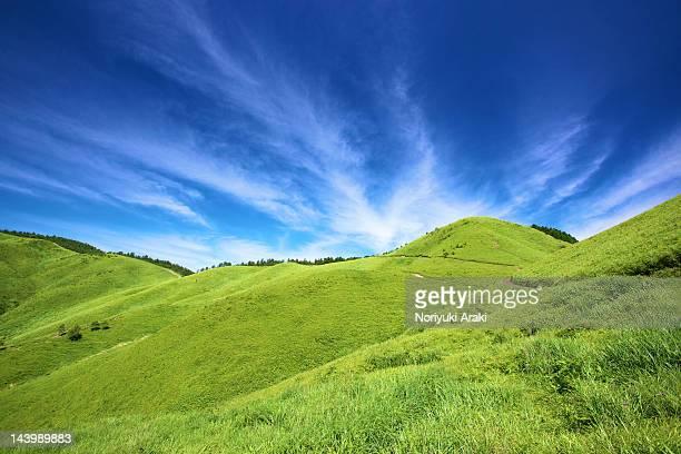 Blue sky with grassland