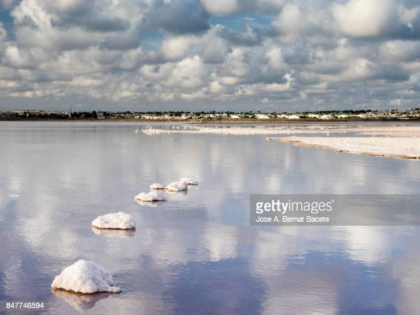 Blue sky with white clouds reflected over calm water of a salty lake with pink background in salt mines of Torrevieja, Alicante, Spain