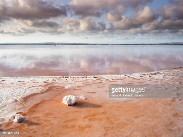blue sky with white clouds reflected over calm water of a salty lake with pink background in salt mines of torrevieja, alicante, spain - lake bed stock pictures, royalty-free photos & images