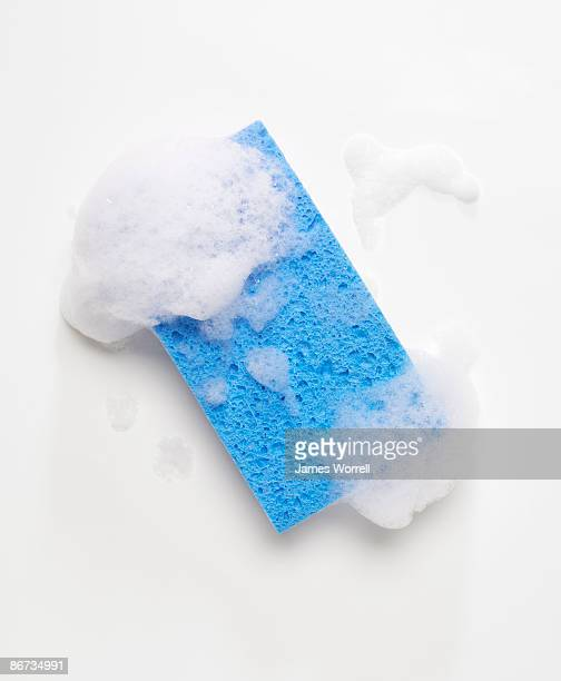 blue sponge with soap suds - sponge stock photos and pictures
